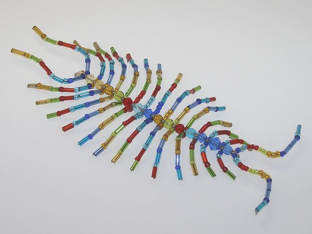 Beaded Centipede #102